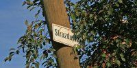 Strazdu iela, 2008.gads