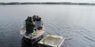 """Biedrības """"Mēs zivīm"""" aktivitates Ikšķilē. Šī projekta ietvaros Daugavā, iepretim Meinarda salai, tika ielaistas 3700  sīgas, kuras sasniegušas gada vecumu."""