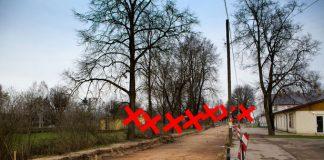 Pārbrauktuves ielas nozāģējamie koki.