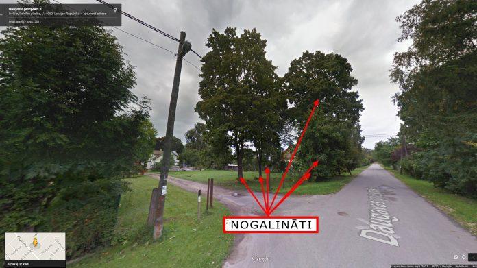 Daugavas prospekts, Ikšķile. Koku stubros veikti slīpi urbumi, kuros ielietas nezināmas izcelsmes ķimikālijas. Foto: Google Maps