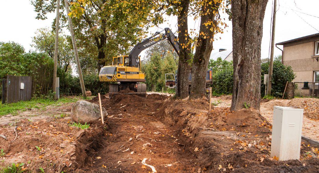 Zemes pietiekoši, bet projektētāji paredzējuši gājēju celiņu tieši pie kokiem. Lielo koku saknes bojātas no divām pusēm.