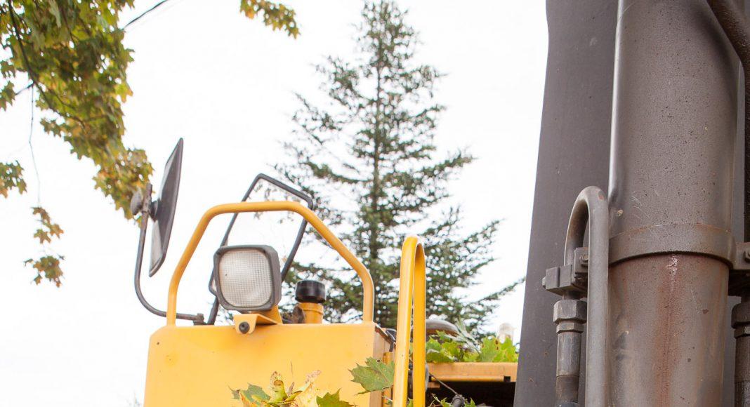 Lielo koku zari tiek aplauzti ar ekskavatora kausu.