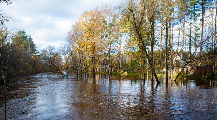 Salenieki, Salaspils lauku teritorija. 17.oktobris 2014.gads, Mazā Jugla. Foto: Ikskile.TV