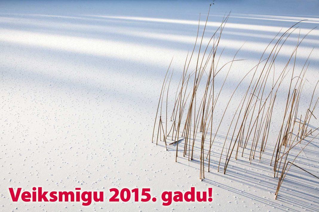 Laimīgu un veiksmīgu 2015.gadu!